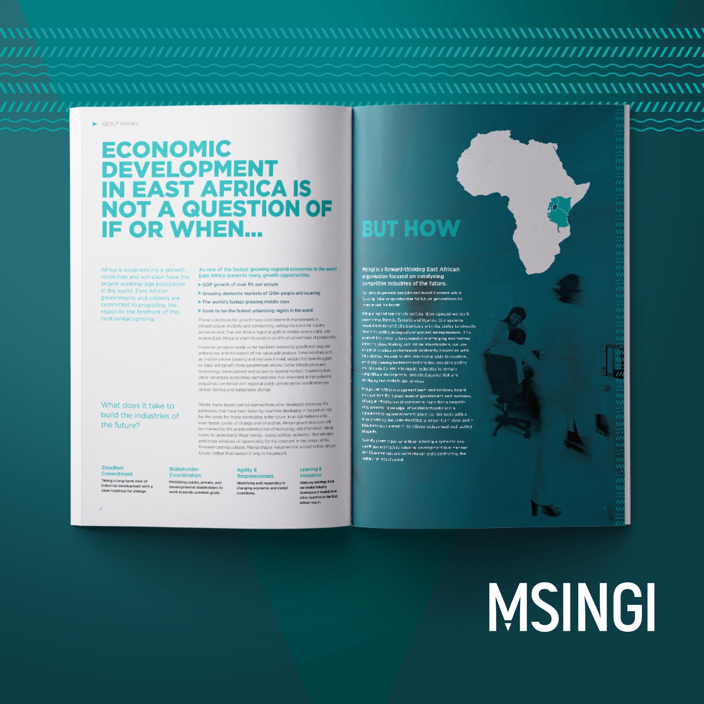 Msingi Kenya Projects